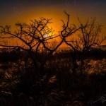 Südafrika 2019 529 - Hammer sunsets & starke Winde - sportlerfotos, outdoor, naturfotos, natur, allgemein, abseits-des-alltags - Sportlerfotos, outdoor, Naturfotos, Geschenke, Ein Tag im Leben eines Fotografens, Draußen