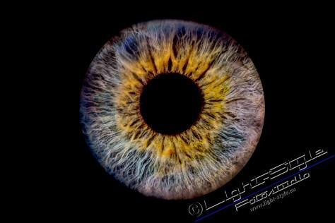 Irisfoto 8 - Euer Irisfoto - einfach geil - irisfotos - Porträts, Liebe ist, Irisfoto, Geschenke, besondere Porträts