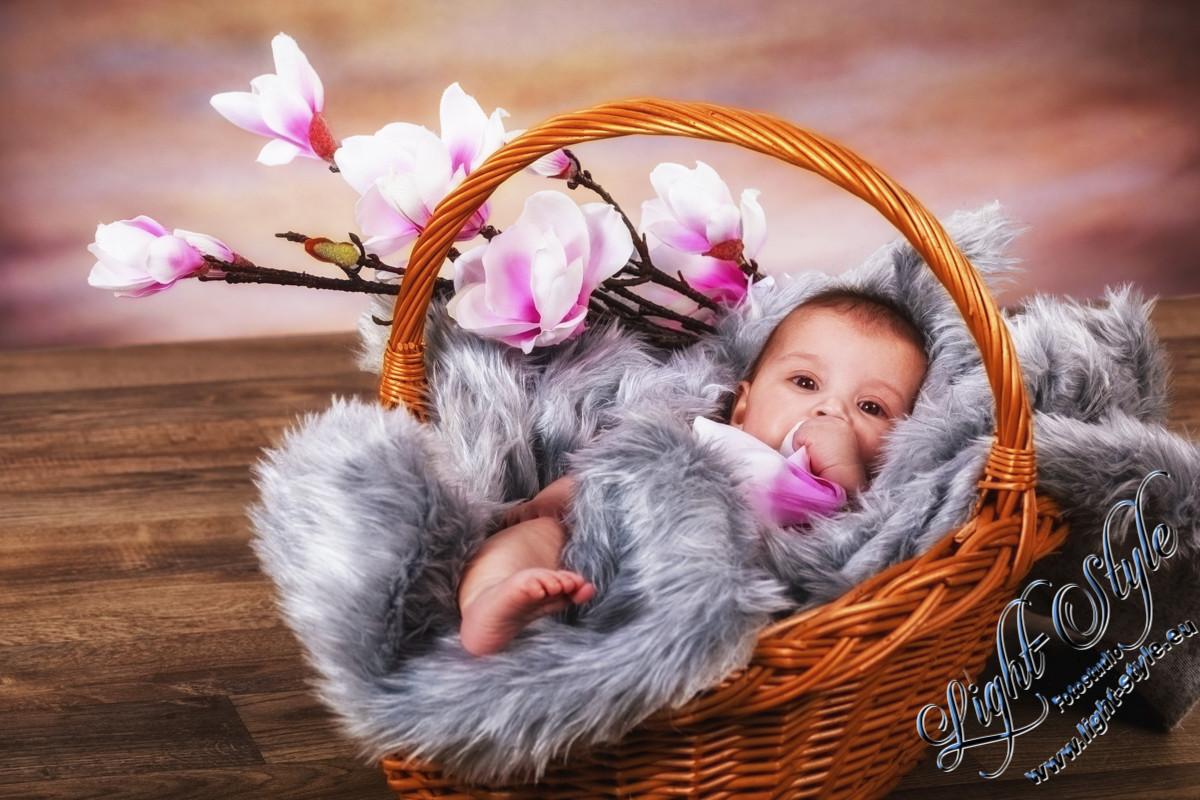 Baby & Babybauch
