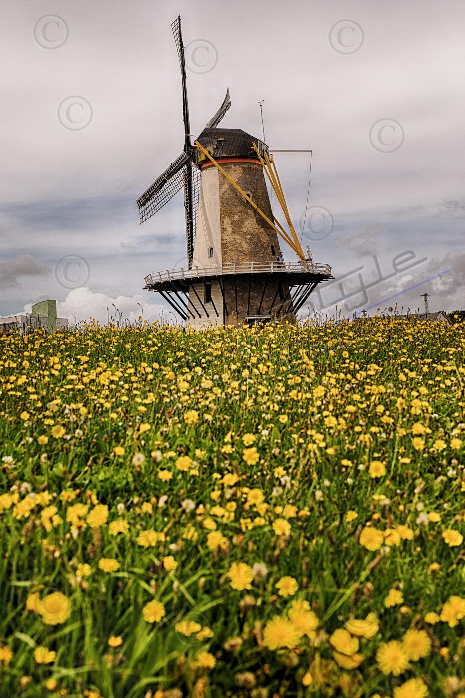 Holland 2017-128