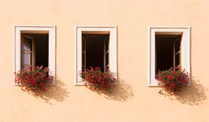 three windows with window boxes