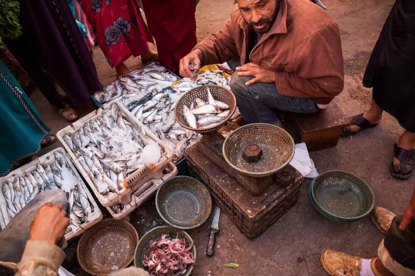 marrakech-street-fish-vendor