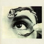 Disco Volante by Mr Bungle