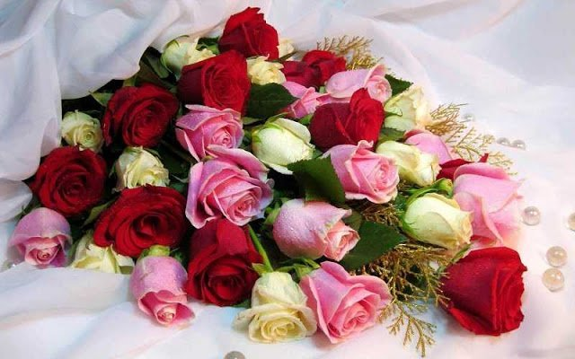 الورود لها لغة سحرية للتعبير
