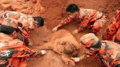 Photo of قمة الحب عندما تضحي الأم بحياتها من أجل طفلها – قصة حقيقية