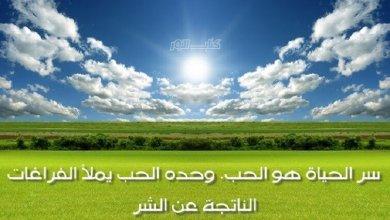 Photo of مجموعة من أجمل الأقوال والحكم في الحياة
