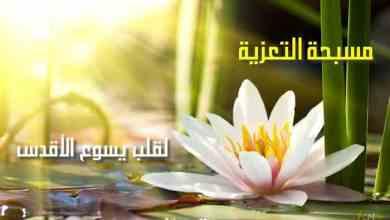 Photo of صلاة المسبحة إكراماً لوجه يسوع الأقدس وتعزية لقلبه الطاهر