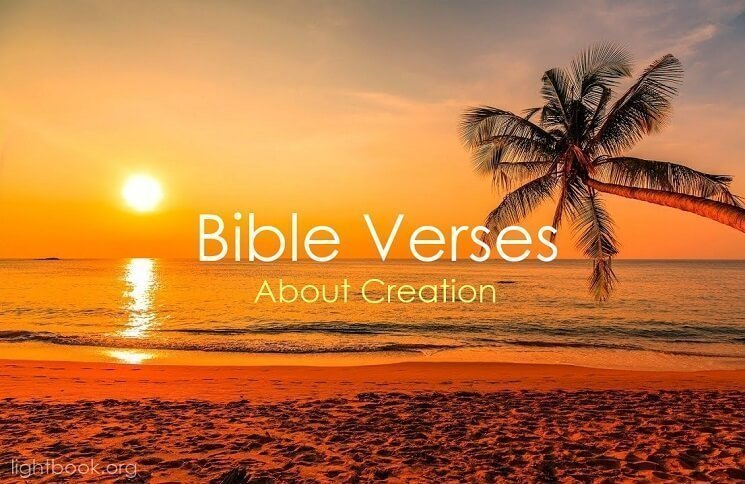 Bible Verses about Creation in English and Arabic