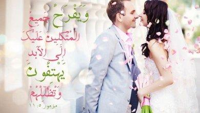 السعادة والهناء Bonheur et Contentement آيات من الكتاب المقدس عربي فرنسي