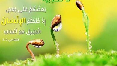Photo of آيات حول الصدق والإخلاص Honnêteté – عربي فرنسي