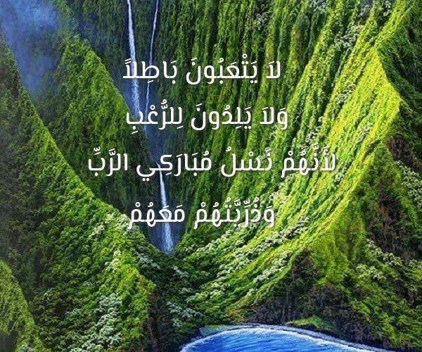 الحمل والولادة ( 2 ) Maternité آيات من الكتاب المقدس عربي فرنسي