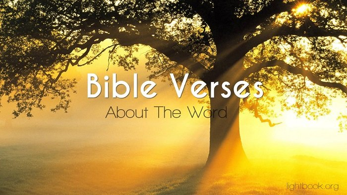 Bible Verses about The Word - What Does the Bible Say about The Word?