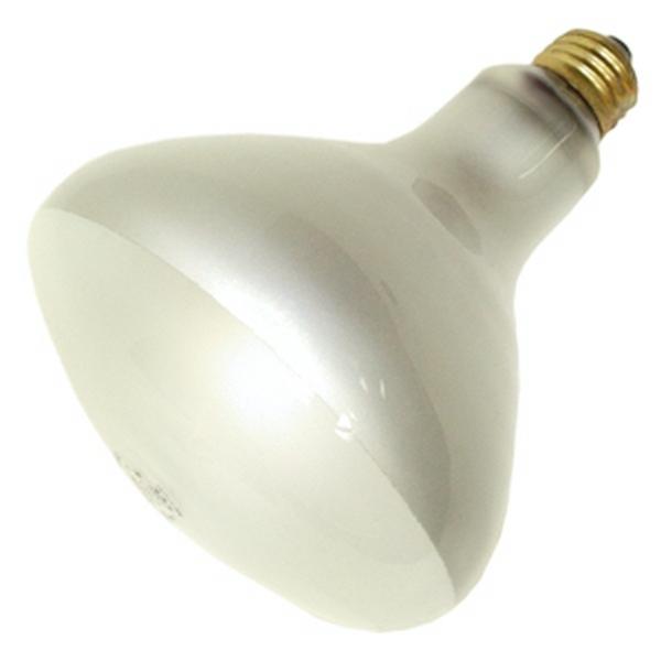 R40 Pool Light Bulb Led
