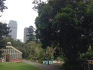 Sidney - The Royal Botanic Gardens - 6