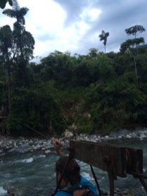 Welcome to the jungle - 3 - Huanuco - Rio Cristalino