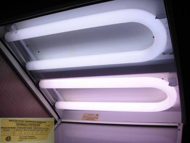 U Bend Light Bulbs