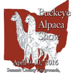 buckeye alpaca show