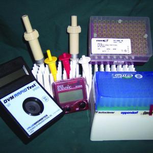 IgG Test Kits