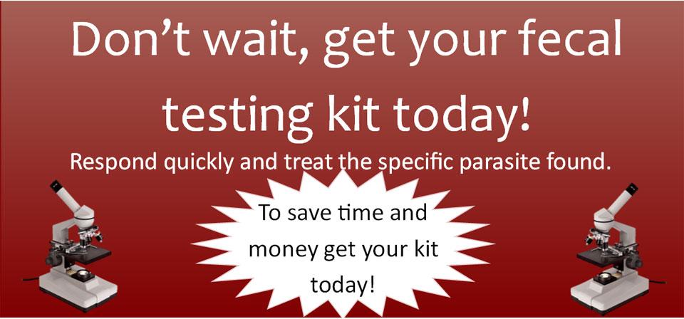 fecal test kit