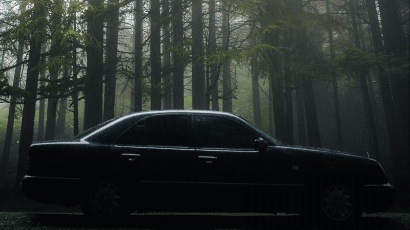 Dark Car in Forest