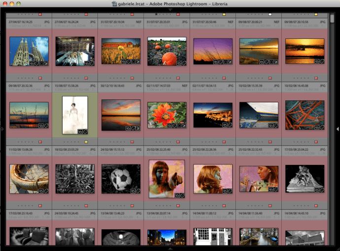 01 lightroom interfaccia visualizzazione visualizzare schermo intero
