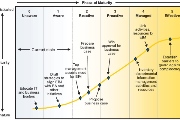 Gartner data governance maturity model