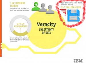 IBM data quality costs