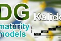 kalido maturity model