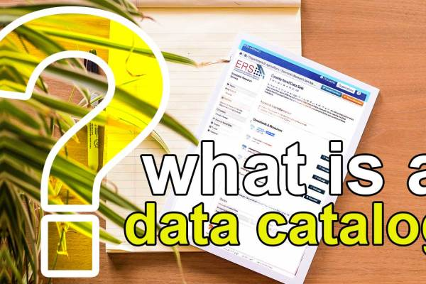 what is a data catalog