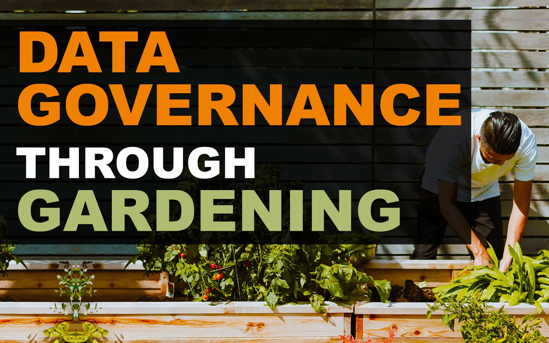 data governance implementation analogy through gardening