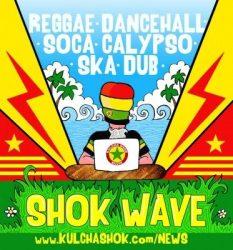 Shok wave logo