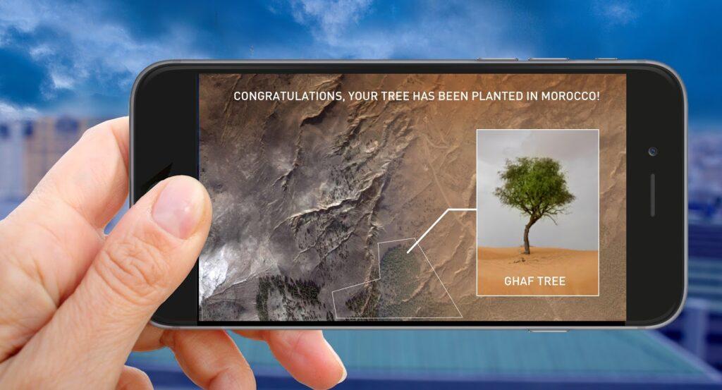 1 Heart 1 Tree - Phase 3 - Téléphone mobile avec la plantation d'un arbre - Illustration : Naziha Mestaoui