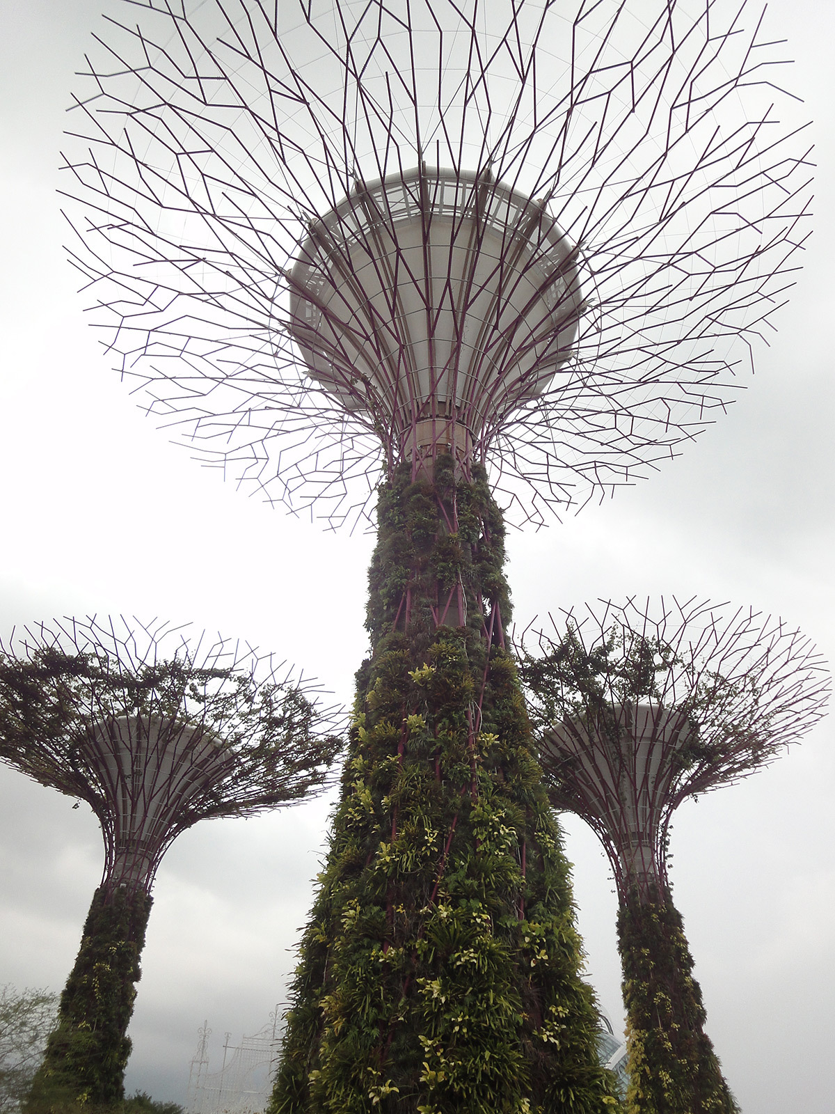 Gardens by the Bay © Roger Narboni
