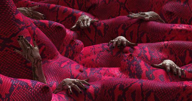Kim Joon, Snake, 2015, 5mn - Courtesy Park Ryu Sook Gallery