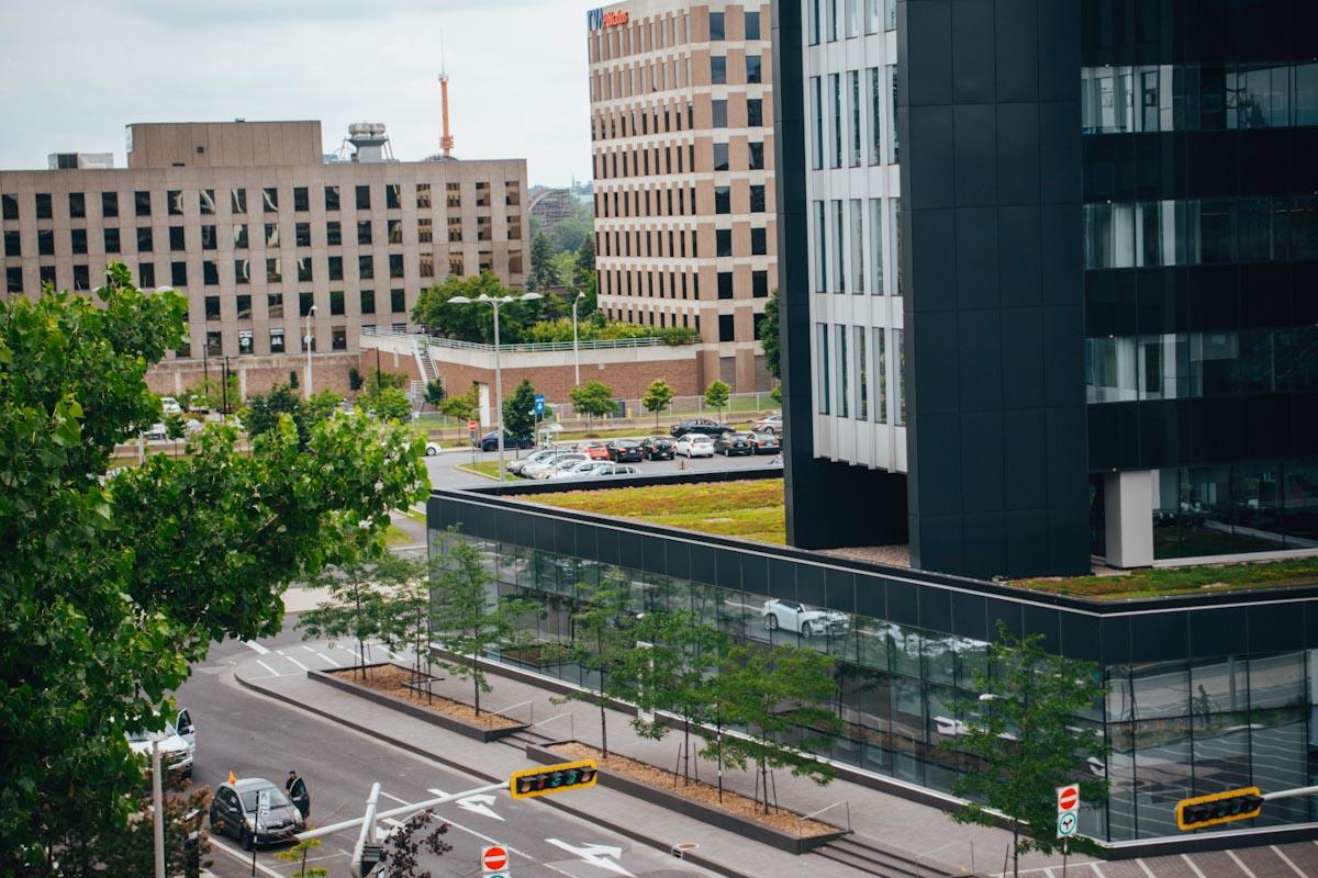 Toiture végétale - toit terrasse - Tour SSQ - Longueuil - La ligne verte (8)
