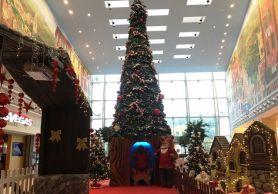 """Nella foto, l'albero di Natale del centro commerciale spezzino """"Le Terrazze"""""""
