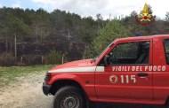 Barbecue fuori controllo: in fiamme i piani di Praglia