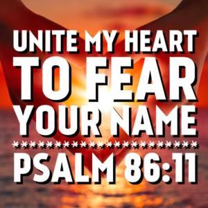 Psalm 86:11