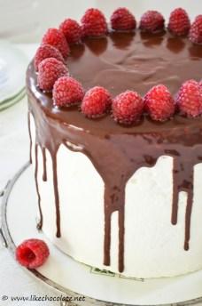 torta s malinama i bijelom čokoladom (4)