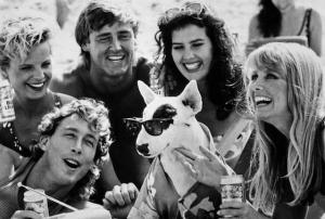 Spuds MacKenzie and Friends