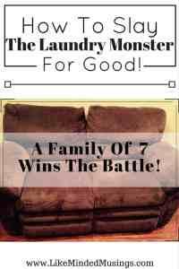 Like Minded Musings Laundry Monster