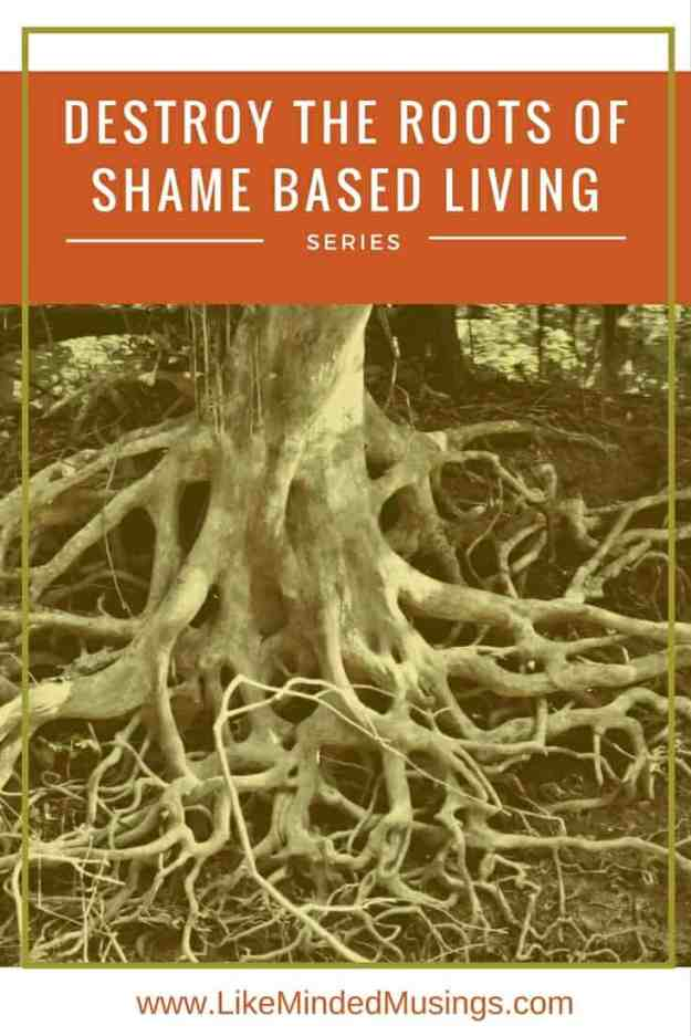 Destroy the Roots of Shame Like Minded Musings