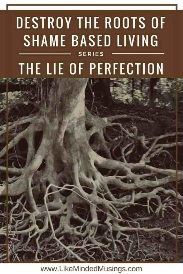 likemindedmusings.com-Destroy-the-Roots-of-Shame-Based-Living-The-Lie-of-Perfection.