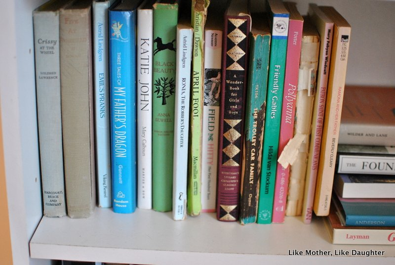 The importance of actual books on real shelves. ~ The LMLD Library Project