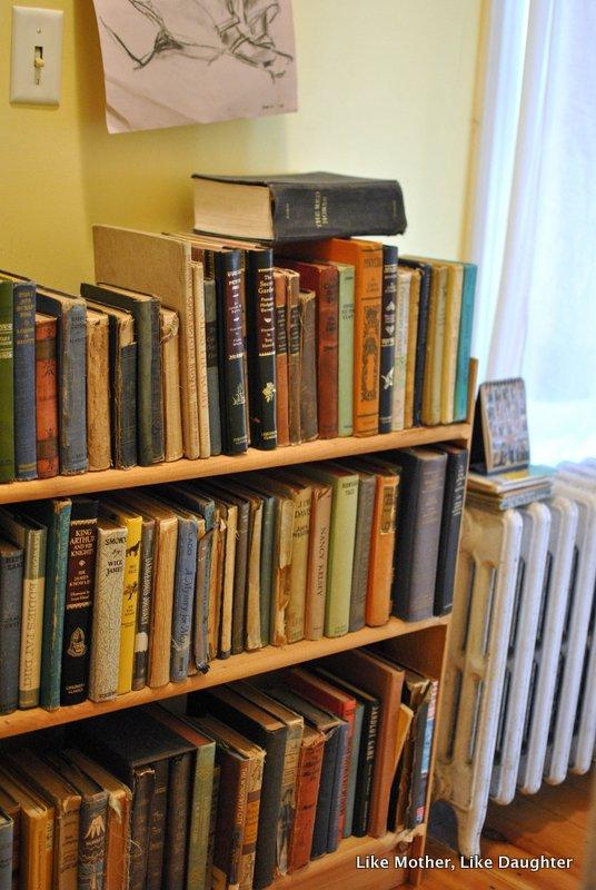 books on shelves-003
