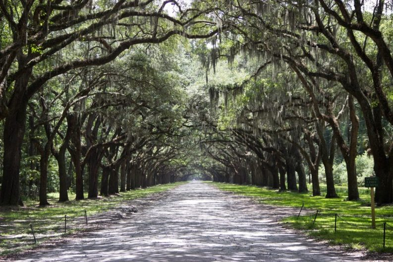 A weekend getaway to Savannah, Georgia awaits