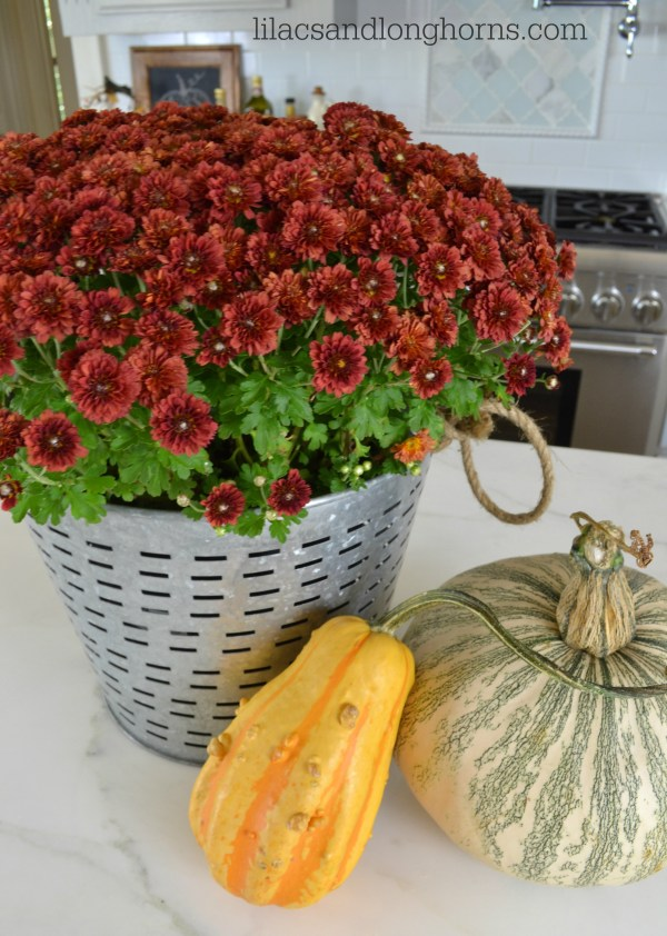 mum and gourds_1