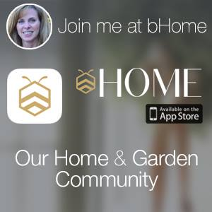 bHome App