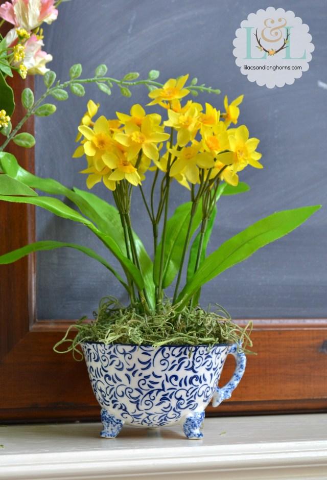 daffodils in a tea cup