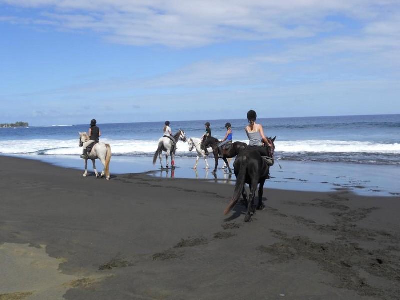Activités : balade à cheval à Réunion